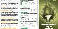diversification alimentaire fruits légumes bébé - Aprifel