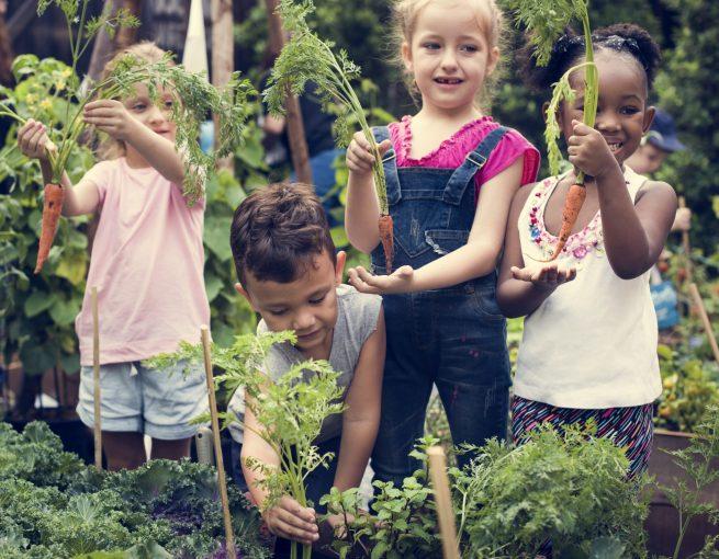 école enfants intervention santé alimentation fruits legumes - Aprifel